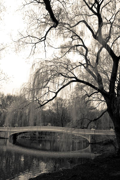 Bridgeincentral photo