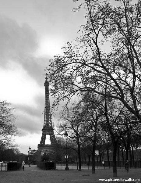 Morningwalk2 photo