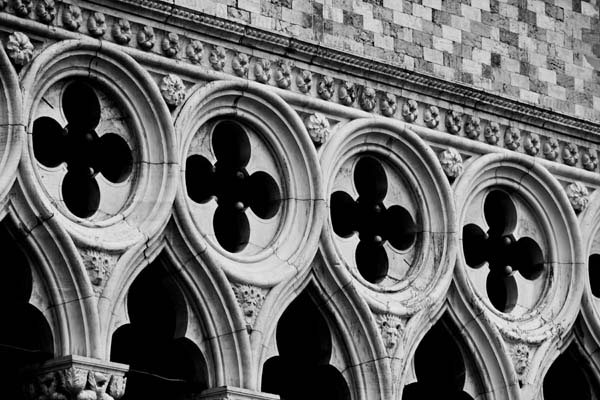 dogedetail  -  black and white photography for sale