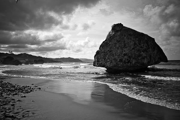 bigrock - Bathsheba Beach is scattered with many large rocks like this one. The beach faces East into the Atlantic Ocean  - black and white photography