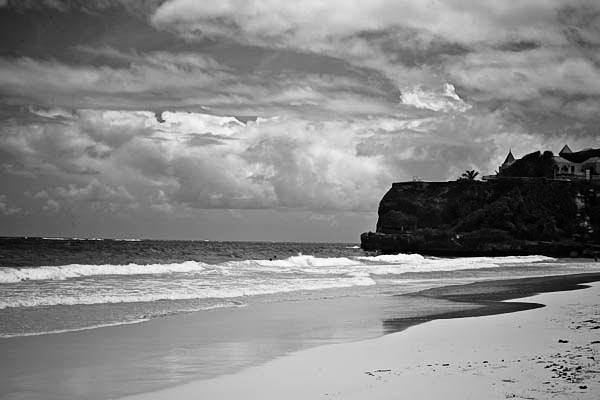 cranebeach2 black and white photography