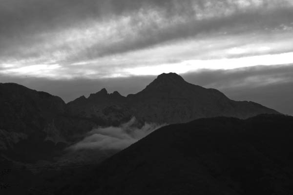 apliapuane print for sale