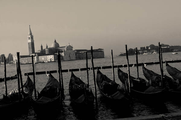 linedup - Before the crowds arrive. Gondolas tied upon on the Venetian waterfont.  - black and white photography