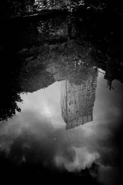 reflectedbeetham print for sale