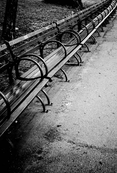 benchesincentral print for sale