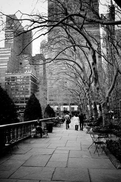bryantpark print for sale