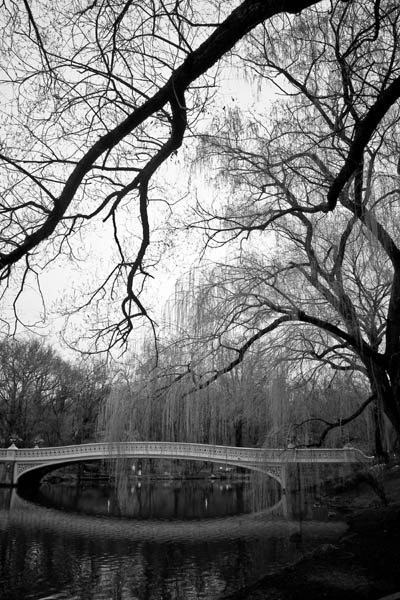 centralbow black and white photography