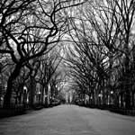 New York, USA black and white photography