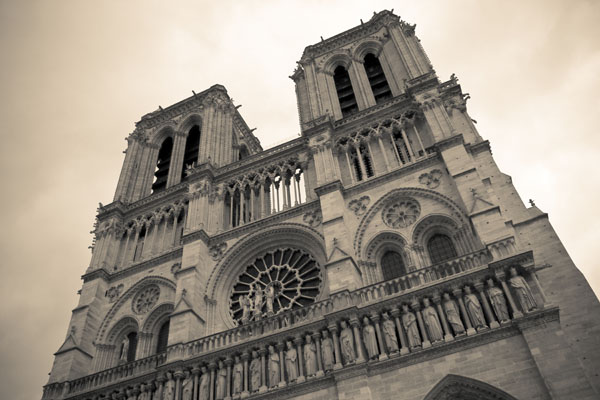 notredame print for sale