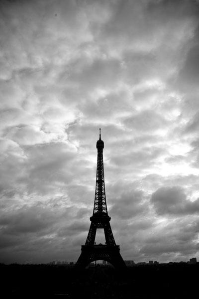 parisneedle print for sale