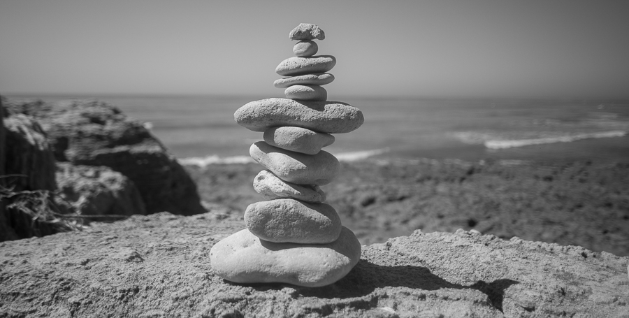 clever  -  black and white photography for sale