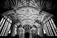 bodleiandivinity - print for sale