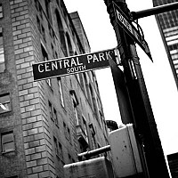 centralpark - black and white photography for sale