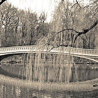 centralparkbridge - black and white photography for sale