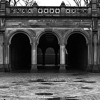 incentralpark - black and white photography for sale