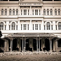 raffles - black and white photography for sale