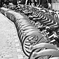 serpent - Bicycles, Paris, 2008 -  photograph for sale