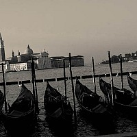 linedup - Before the crowds arrive. Gondolas tied upon on the Venetian waterfont.  -  print for sale