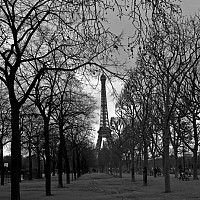 morningwalk - In the gardens around the Eiffel Tower. These gardens are known as Le Parc du Champs de Mars. The Eiffel Tower was built in 1889 as a temporary exhibit for the World's fair. It proved to be so successful that it remained and is now one of the world's most famous landmarks.    -  print for sale