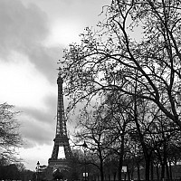 morningwalk2 - This photograph shows the Le Tour Eiffel from the Parc Du Champ De Mars - or field of Mars.  -  print for sale