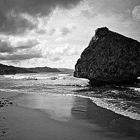 bigrock - Bathsheba Beach is scattered with many large rocks like this one. The beach faces East into the Atlantic Ocean  -  print for sale