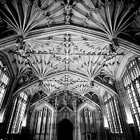 bodleiandivinity - The Divinity School at the Bodleian Library, Oxford University. This black and white photograph shows the intricate stone work that adorns the library.