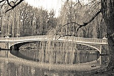 centralparkbridge black and white photography for sale