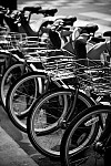 lesbicycles black and white photography for sale