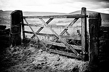 lydgategate black and white photography for sale